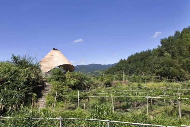 sun room, hong kong üniversitesi, bambu