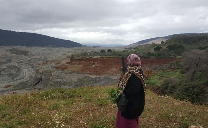 Muğla'da termik kömür santrali yıkımı