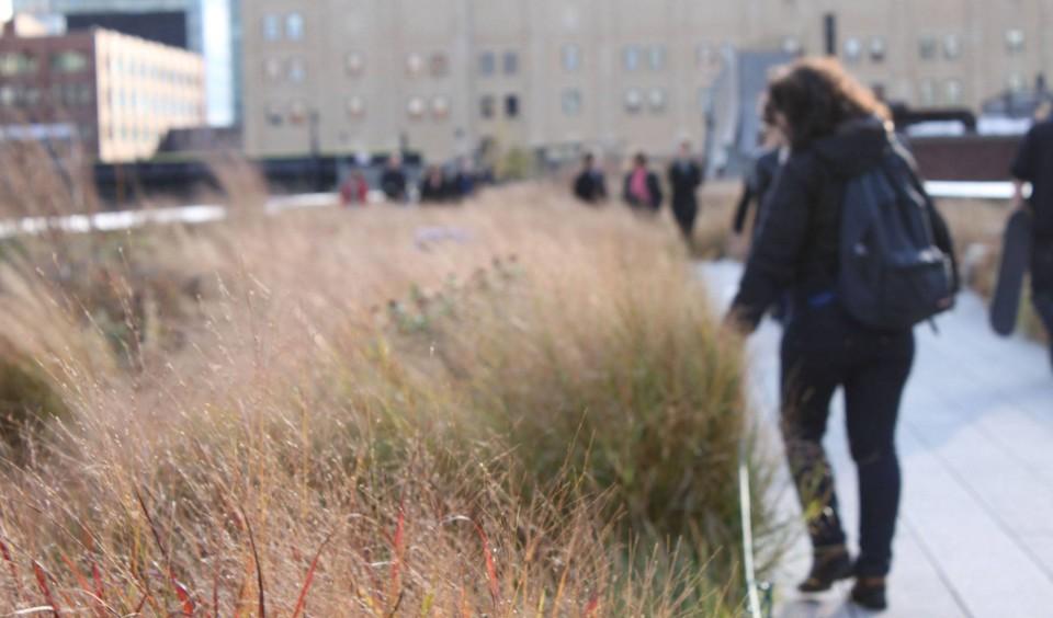 Highline, Newyork
